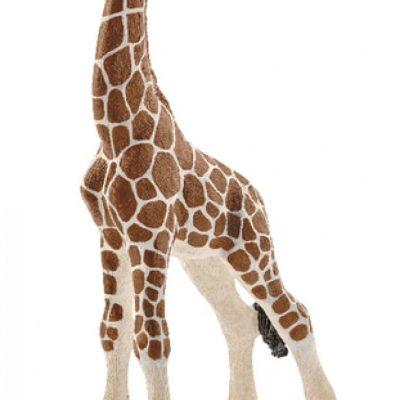 Schleich 14751 Giraffenbaby